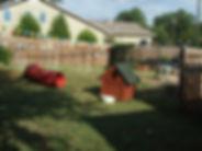 PassionPC yard.JPG