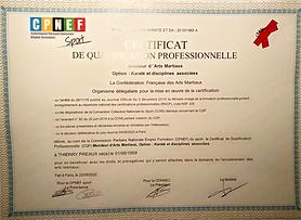 CQP Moniteur d'arts martiaux Thierry Préaux