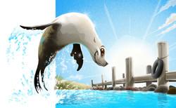 Zoos Victoria Seal Enclosure Launch