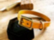 handmade-leather-oxfordshire-dog-collar.