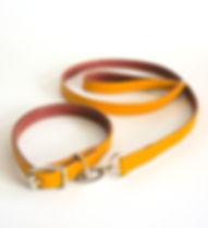 Mollee-Collar-Lead-Lux-2.JPG