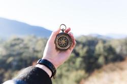 Orientierung, Treiber, Motivator
