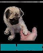 Ποδια νυχια Σκυλου