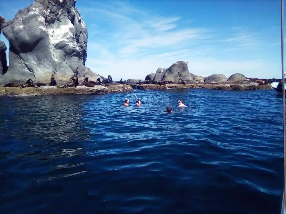 Snorkel en Isla Coronados