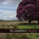 Legacy by Liz Madden and Fionan de Barra