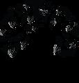 Logo solo - noir.png