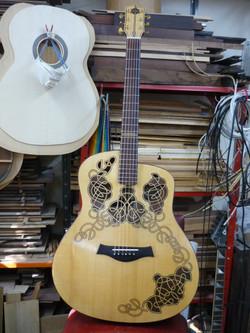 Carolan experimental guitar