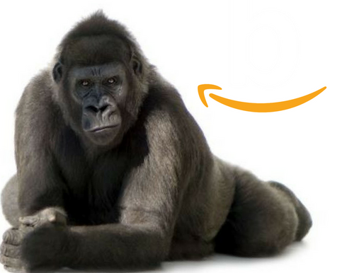 All About Amazon, Part Three: Recommendations