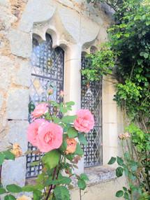 Feature window flower.jpg