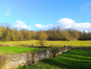 Countryside View.jpg