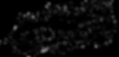 CID logo keyed copy.png