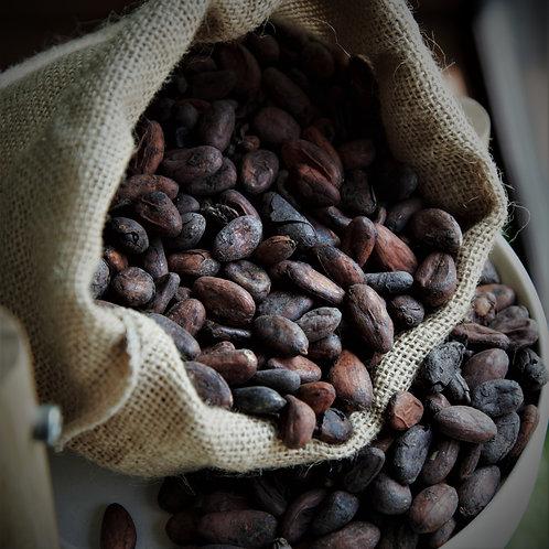Fèves de cacao entières crues