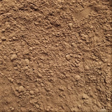 Cacao en poudre