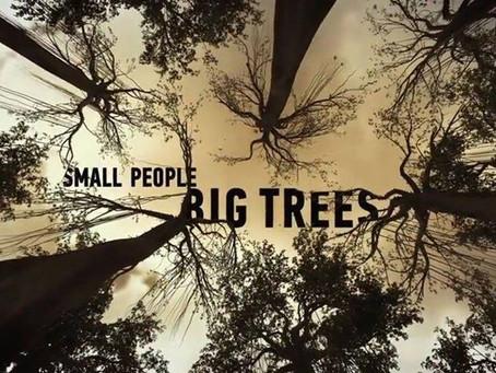 Etnološki filmovi u Manakovoj kući - Mali ljudi, veliko drveće