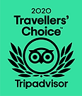 travelers-choice-2020-triadvisor.png