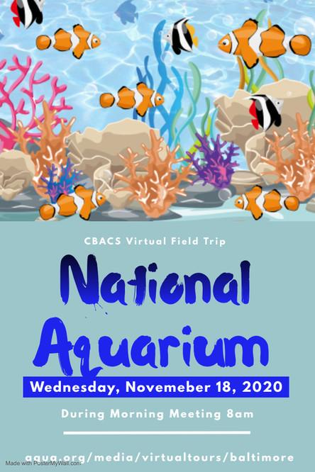 National Aquarium Virtual Field Trip - Wed. 11/18 during Morning Meeting