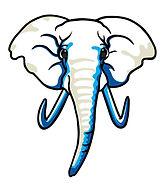 EBACS_Elephant Head -New.jpg