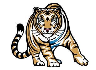 10.2019_CBACS_Tiger-01.jpg