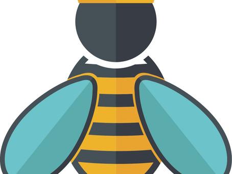 No, You Have Never Met a Queen Bee.
