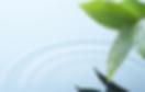 Mindfulness & Wellness One Day Retreat | Greece