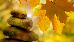 Τέσσερις Σημαντικές Εμπειρίες Από ΈναMindfulness Retreat