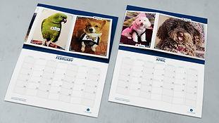 img-pet-calendar-two-calendars.jpg