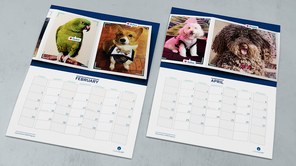 Print design: Pet calendars for CanceCare non-profit