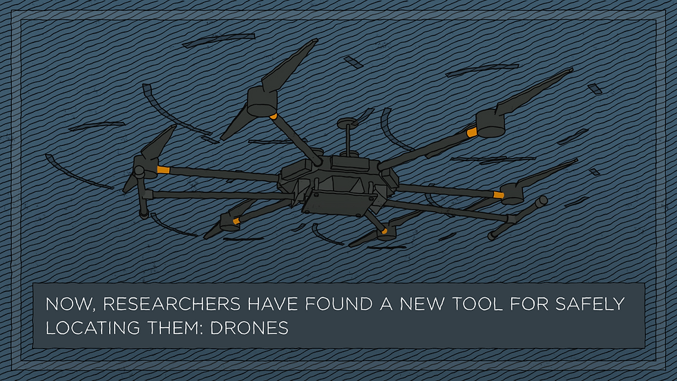 Illustration of a DJI drone, from animation by EDLUNDART