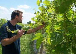 Interview: Kevin Geeting of Country Heritage Winery