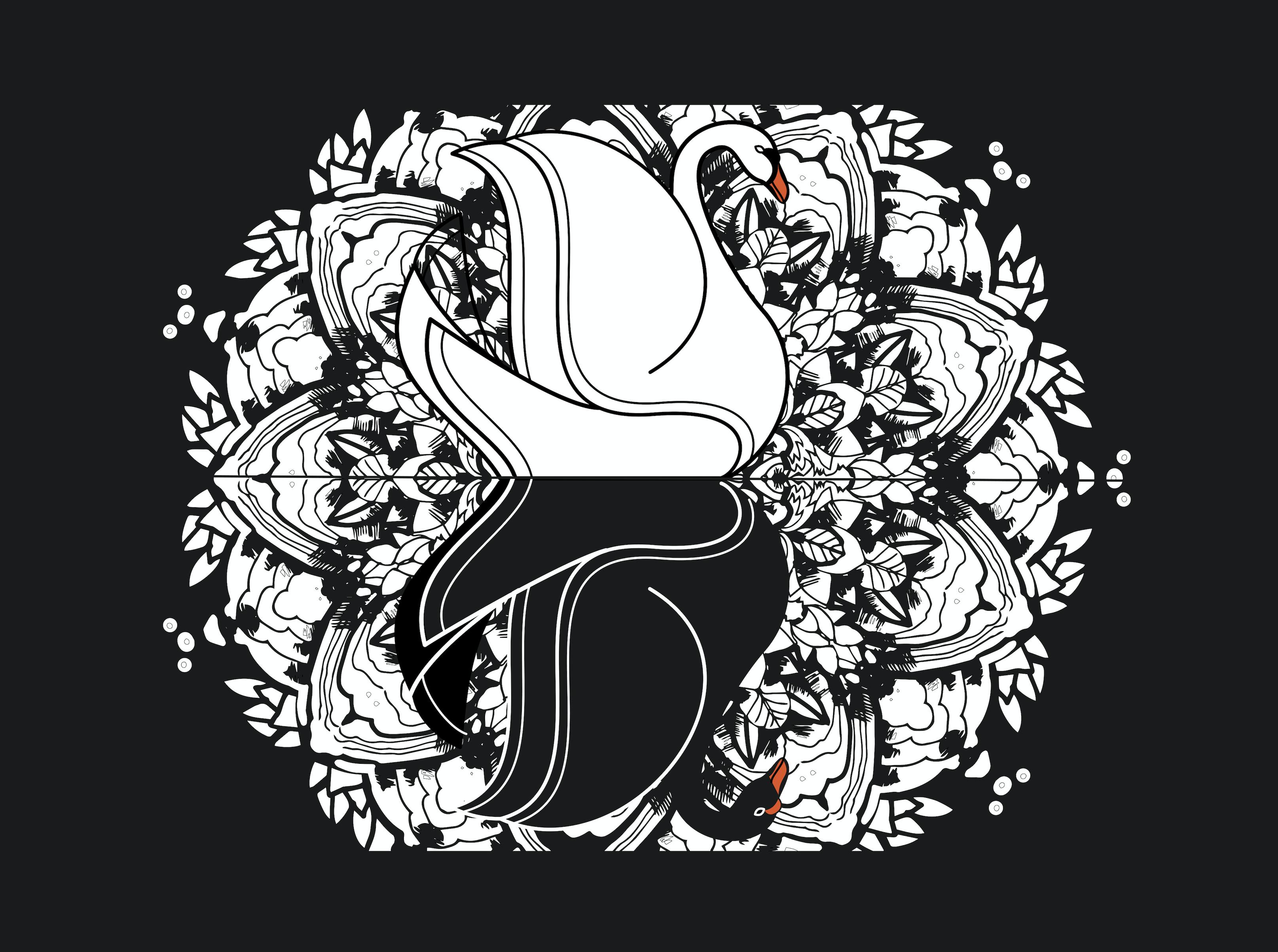 Cygne-fond-noir