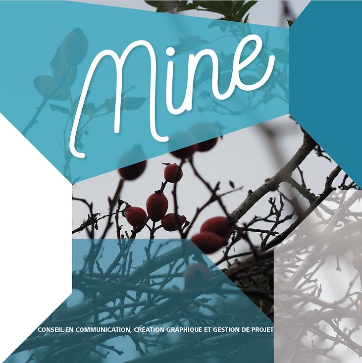 Mine Communicaton création graphique gestion de projet Lyon Rhones Alpes Nimes Gard