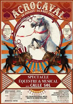 Affiche-cirque-2017.png
