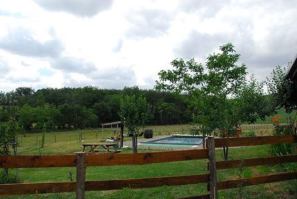 la vue de la piscine