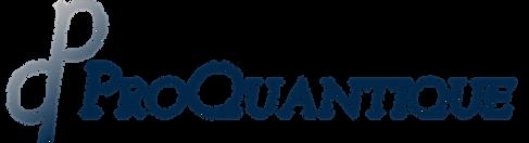 Proquantique-Logo-Bold-RVB-V4.png