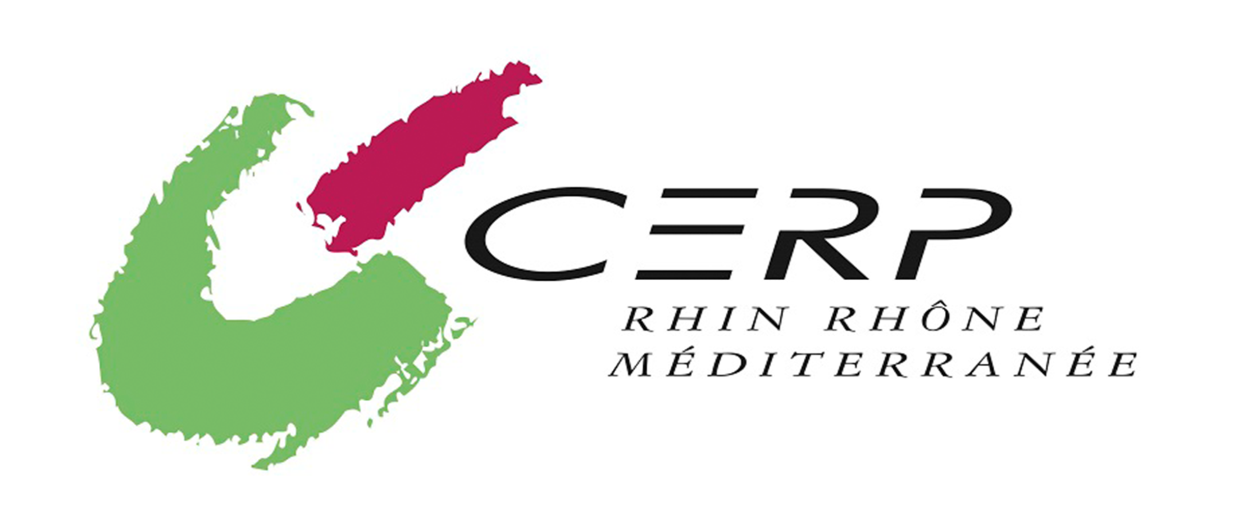 Logo%20CERP_edited.png