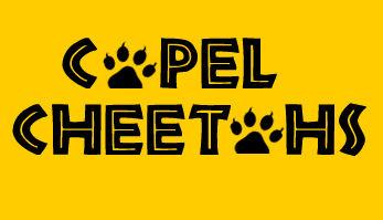 cheetahs logo.jpg
