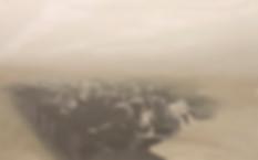 Павел Отдельнов. Заседание. 2016 х.м. 100х160.jpg