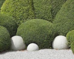 Home-Gartenpflege.jpg