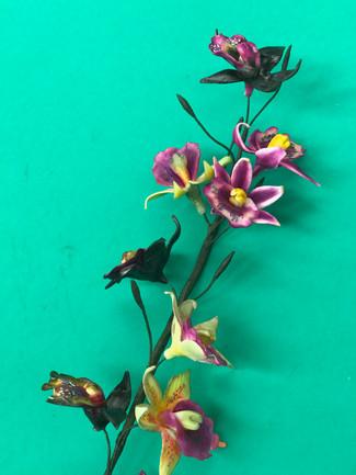 Sugar Paste Orchids