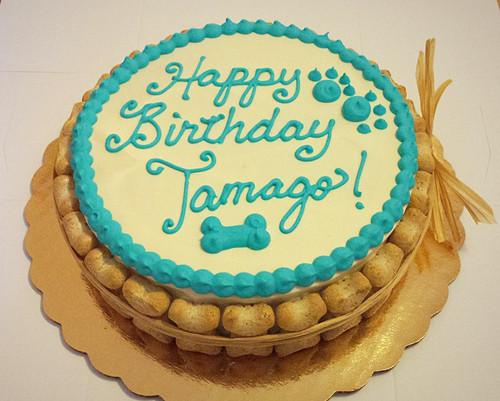 Custom Designed Dog Birthday Cake