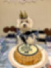 Our yummy paw print dog cake.