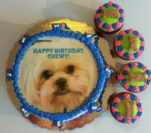 6 Photo Image Dog Cake And 4 Cupcakes