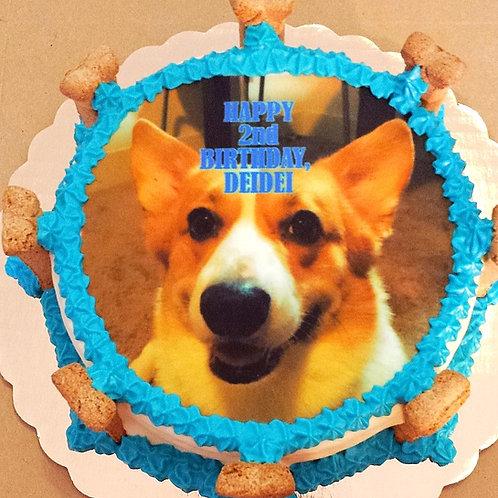 "6"" edible image cake"