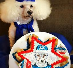 bark mitzvah cake n scottie_edited.png