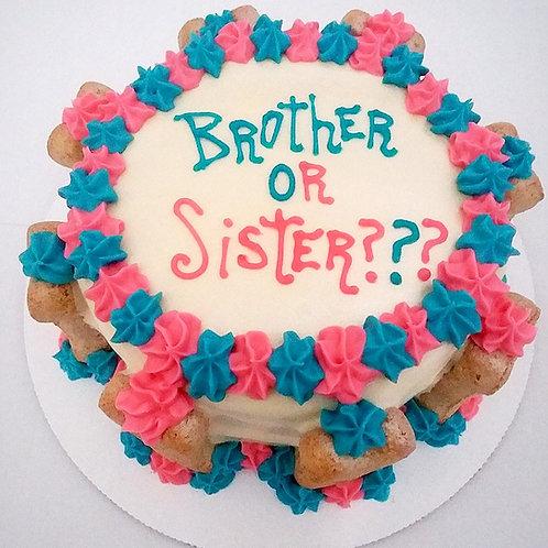 Gender reveal dog cake!