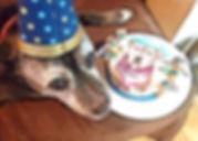 joey n cake