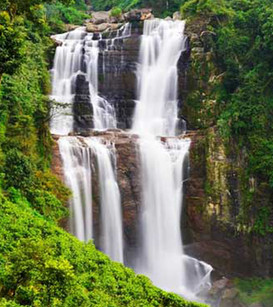 Sri Lanka Picture 7.jpg