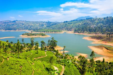 Sri Lanka Picture 76.jpg