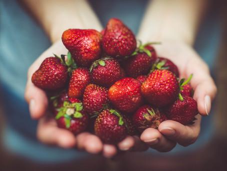 What Makes Food Medicine?