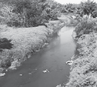 Mayors seek more funds for flood control along Guanajibo River